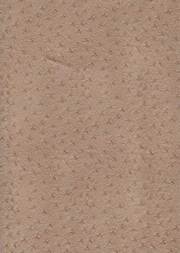 Leather Ostrich Taupe